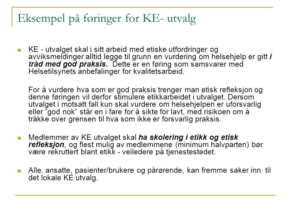 Eksempel på føringer for KE- utvalg