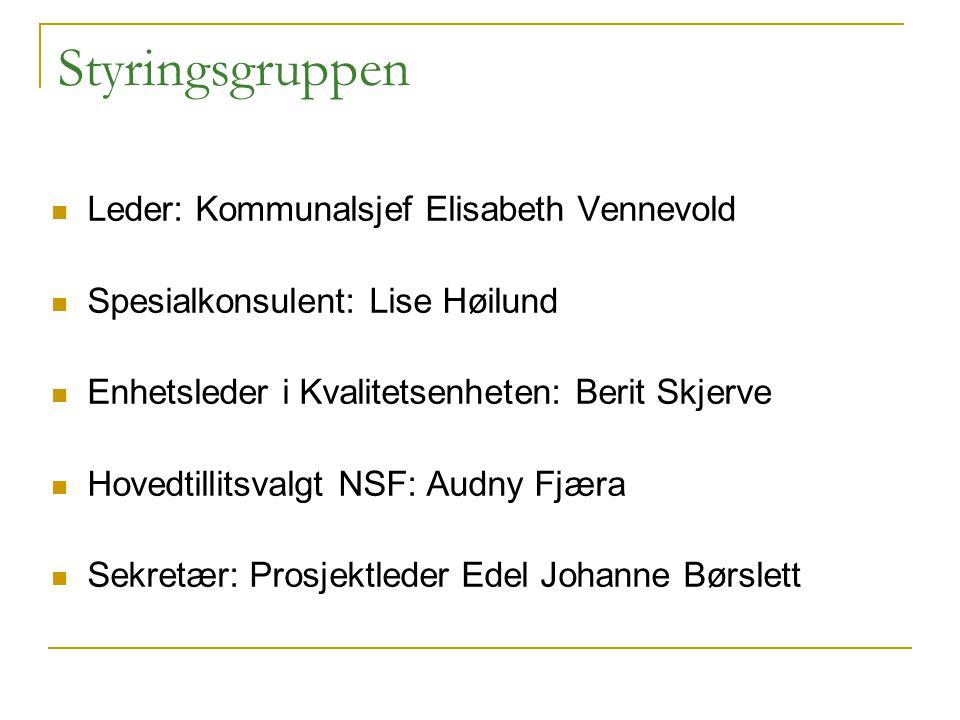 Styringsgruppen Leder: Kommunalsjef Elisabeth Vennevold