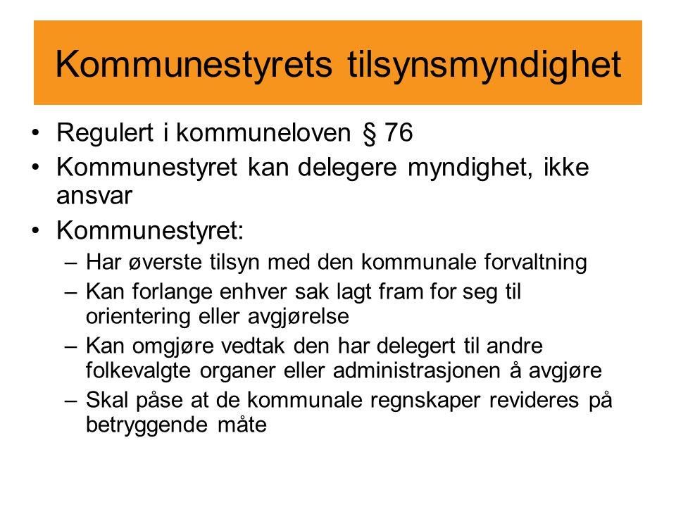 Kommunestyrets tilsynsmyndighet