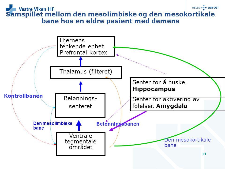 Samspillet mellom den mesolimbiske og den mesokortikale bane hos en eldre pasient med demens