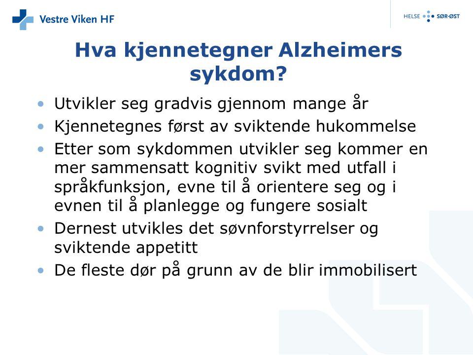 Hva kjennetegner Alzheimers sykdom