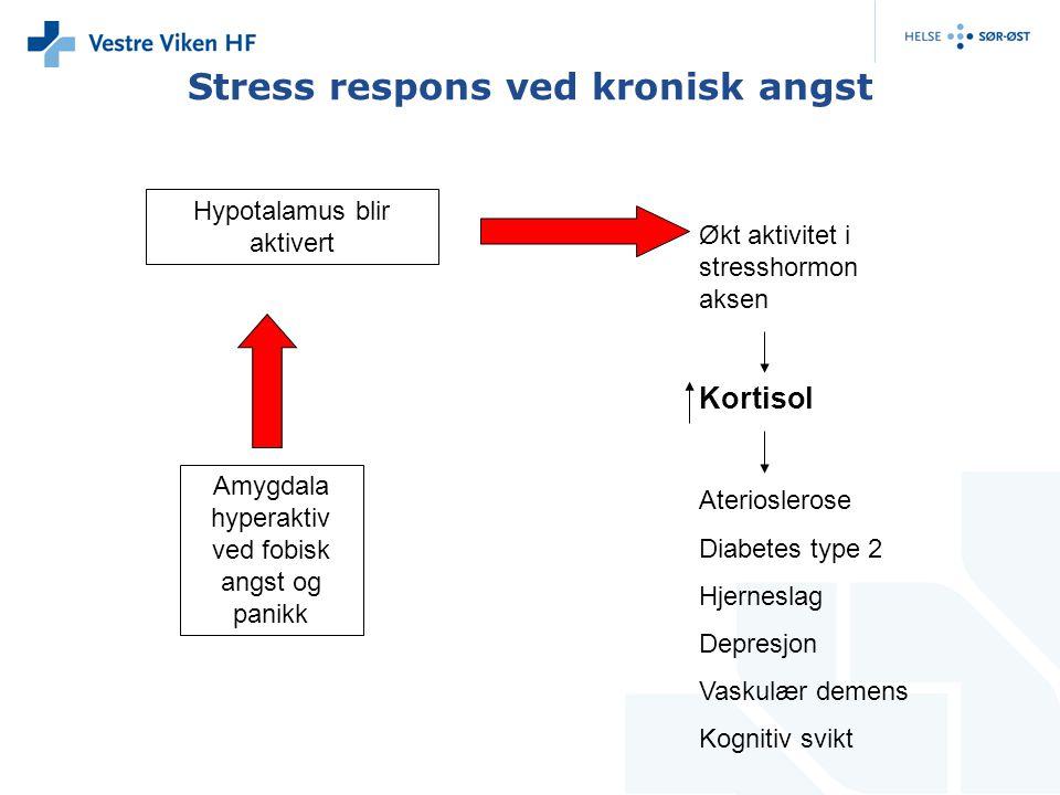 Stress respons ved kronisk angst