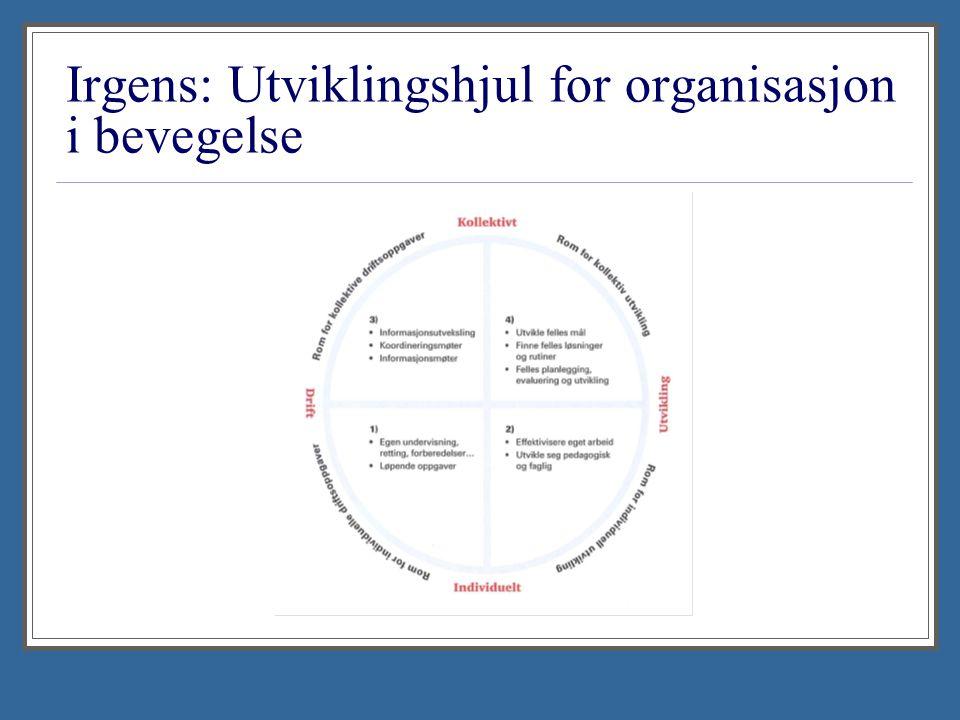 Irgens: Utviklingshjul for organisasjon i bevegelse