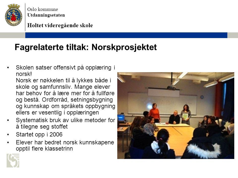 Fagrelaterte tiltak: Norskprosjektet