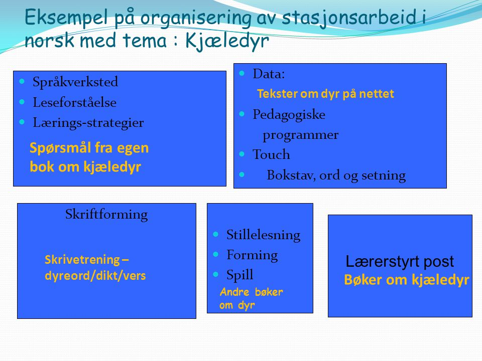 Eksempel på organisering av stasjonsarbeid i norsk med tema : Kjæledyr
