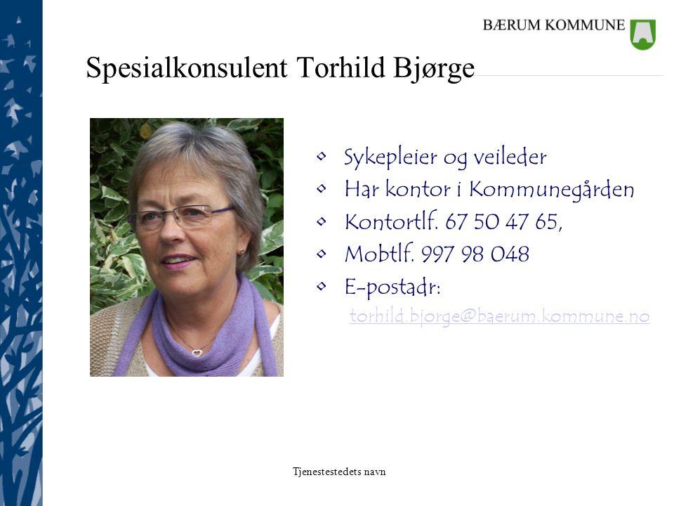 Spesialkonsulent Torhild Bjørge
