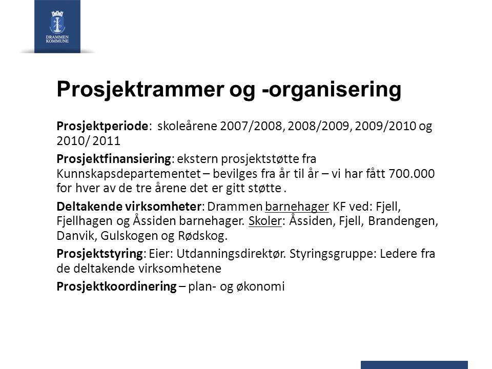 Prosjektrammer og -organisering