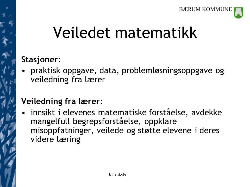 Veiledet matematikk Stasjoner: