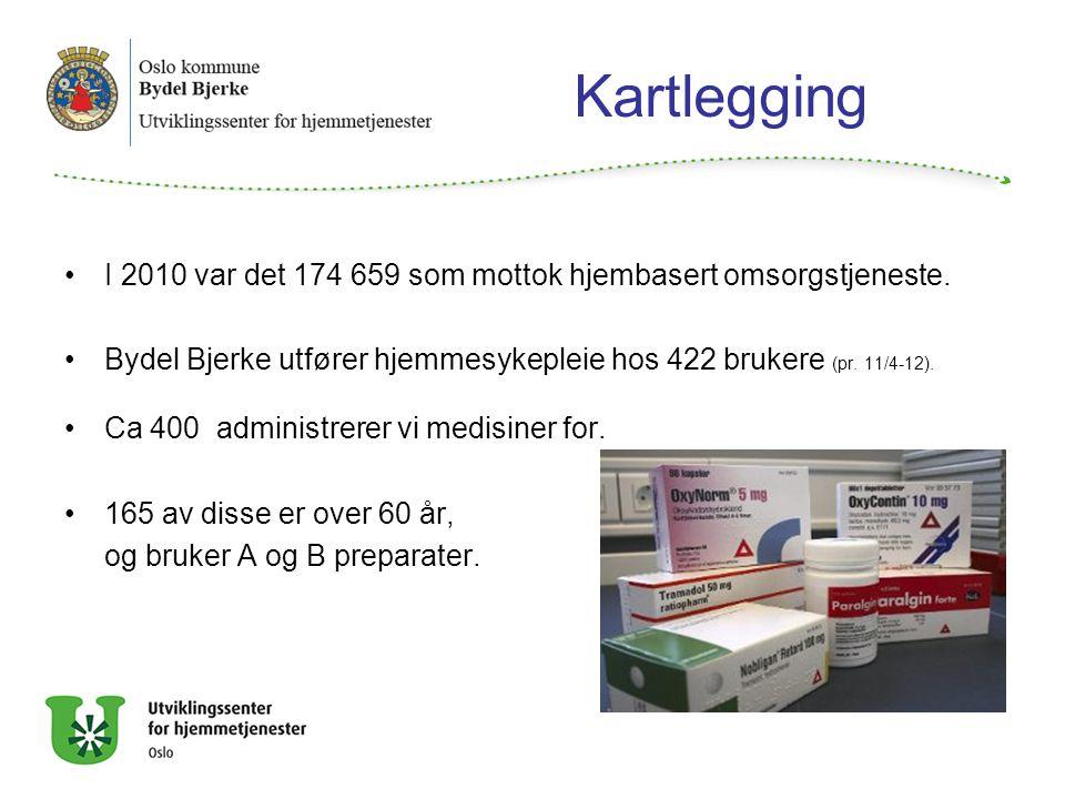 Kartlegging I 2010 var det 174 659 som mottok hjembasert omsorgstjeneste. Bydel Bjerke utfører hjemmesykepleie hos 422 brukere (pr. 11/4-12).