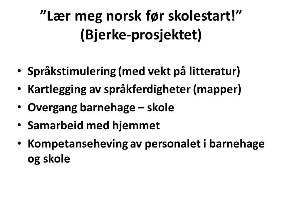 Lær meg norsk før skolestart! (Bjerke-prosjektet)
