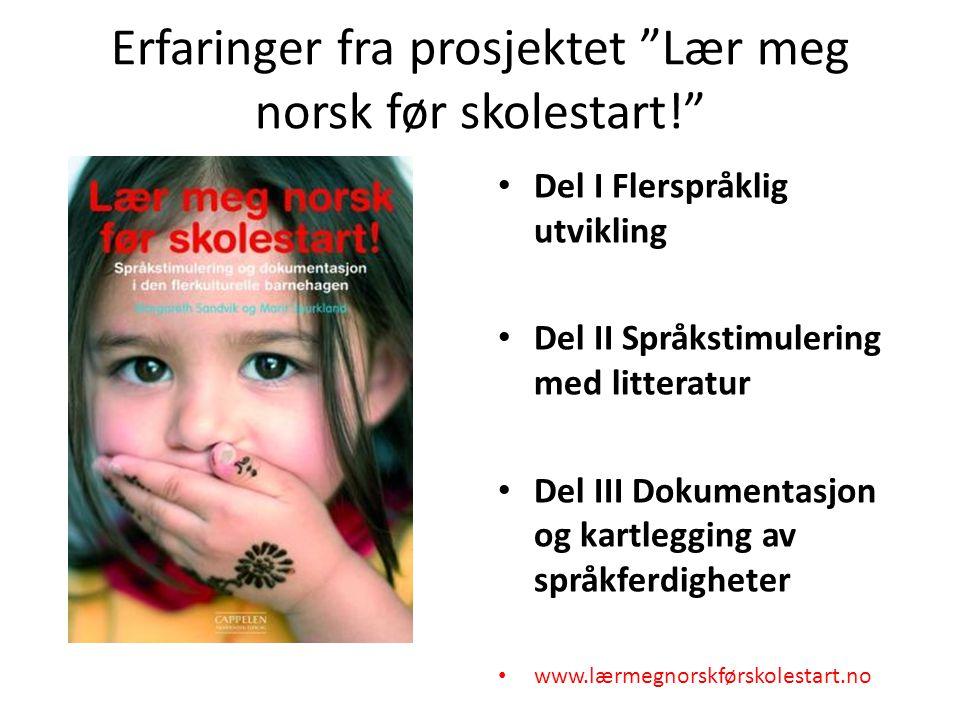 Erfaringer fra prosjektet Lær meg norsk før skolestart!