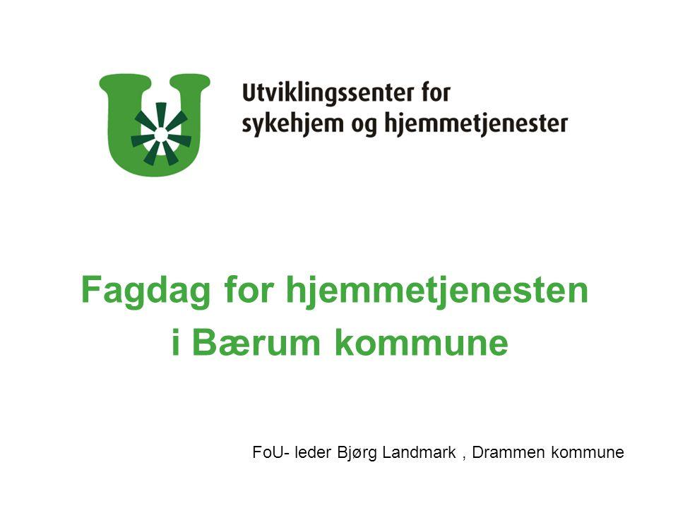 Fagdag for hjemmetjenesten i Bærum kommune