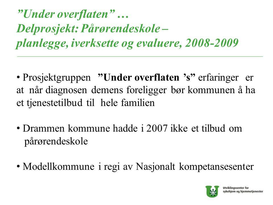 Under overflaten … Delprosjekt: Pårørendeskole – planlegge, iverksette og evaluere, 2008-2009