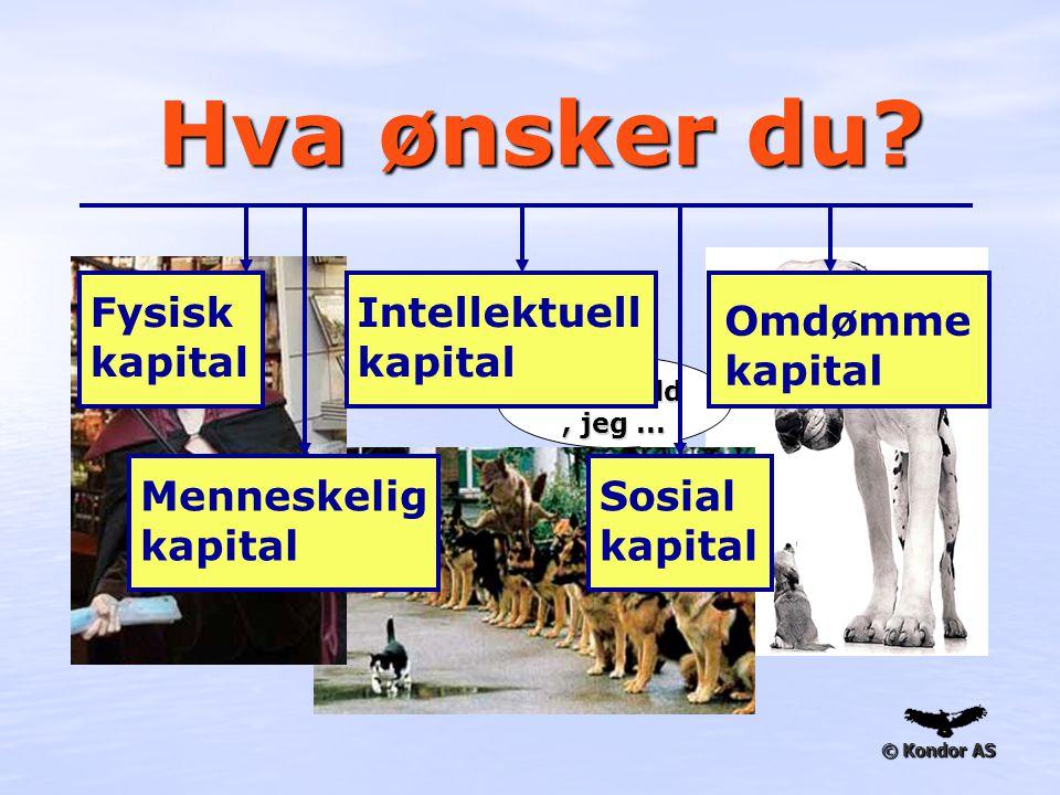 Hva ønsker du Fysisk kapital Intellektuell kapital Omdømme kapital