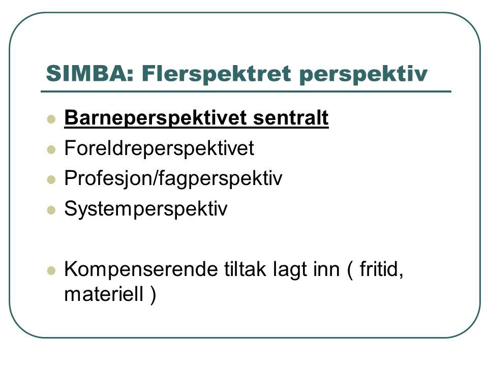 SIMBA: Flerspektret perspektiv