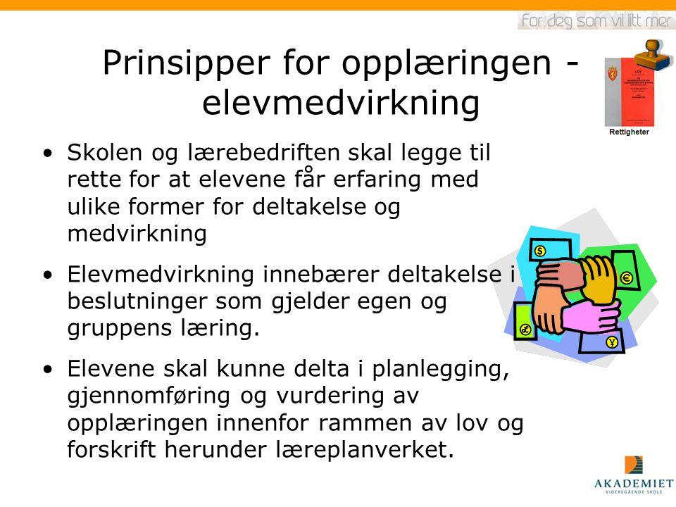 Prinsipper for opplæringen - elevmedvirkning