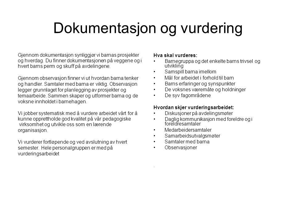 Dokumentasjon og vurdering