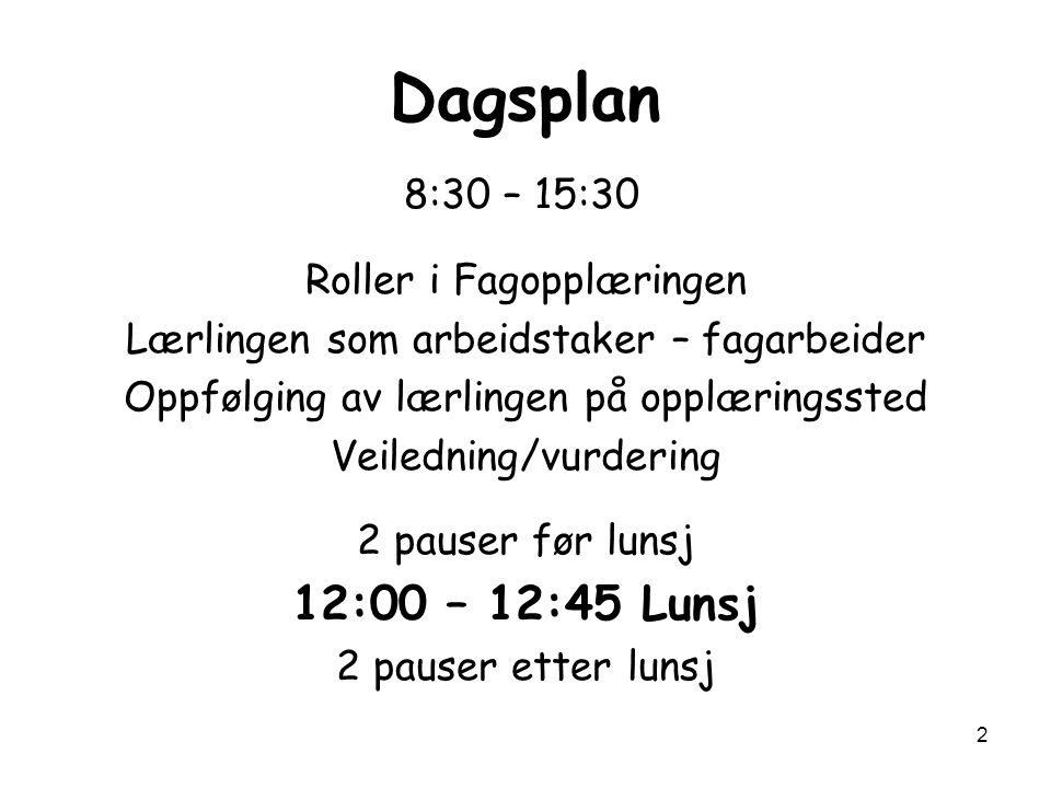 Dagsplan 12:00 – 12:45 Lunsj 8:30 – 15:30 Roller i Fagopplæringen
