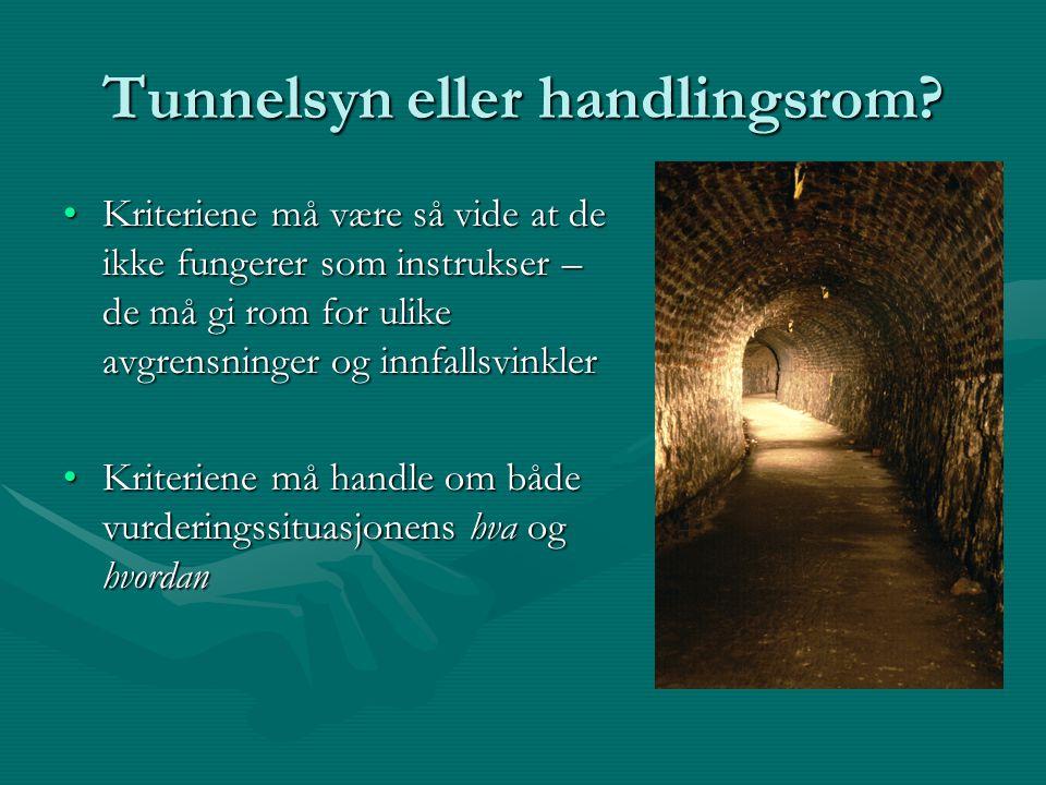 Tunnelsyn eller handlingsrom