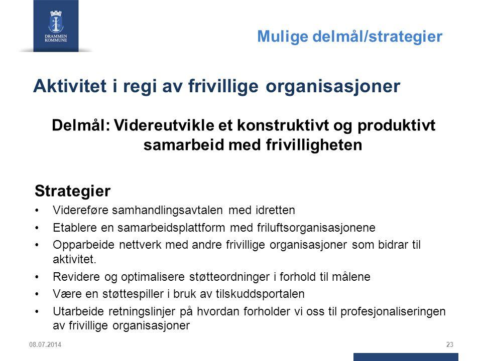 Aktivitet i regi av frivillige organisasjoner