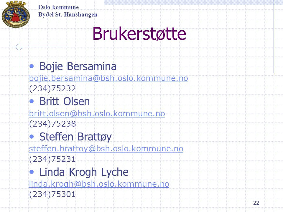 Brukerstøtte Bojie Bersamina Britt Olsen Steffen Brattøy