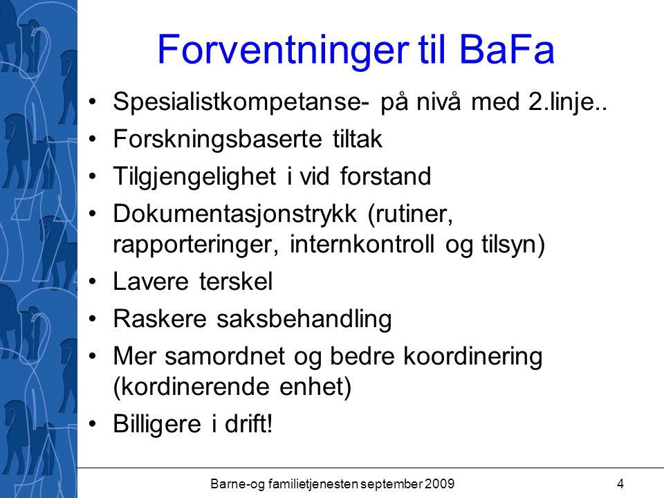 Forventninger til BaFa