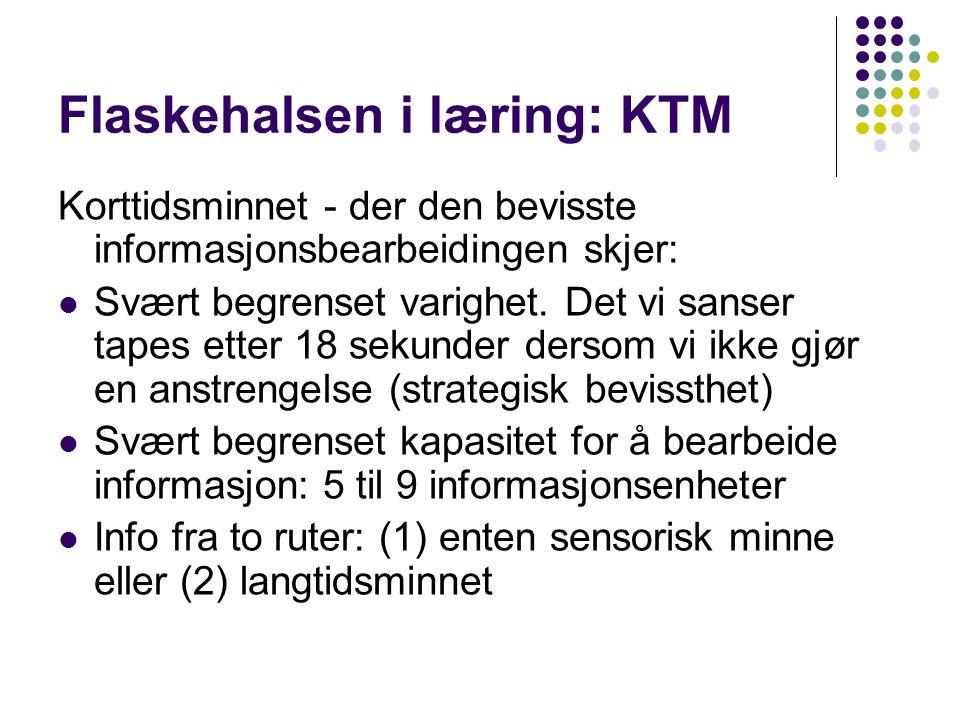 Flaskehalsen i læring: KTM