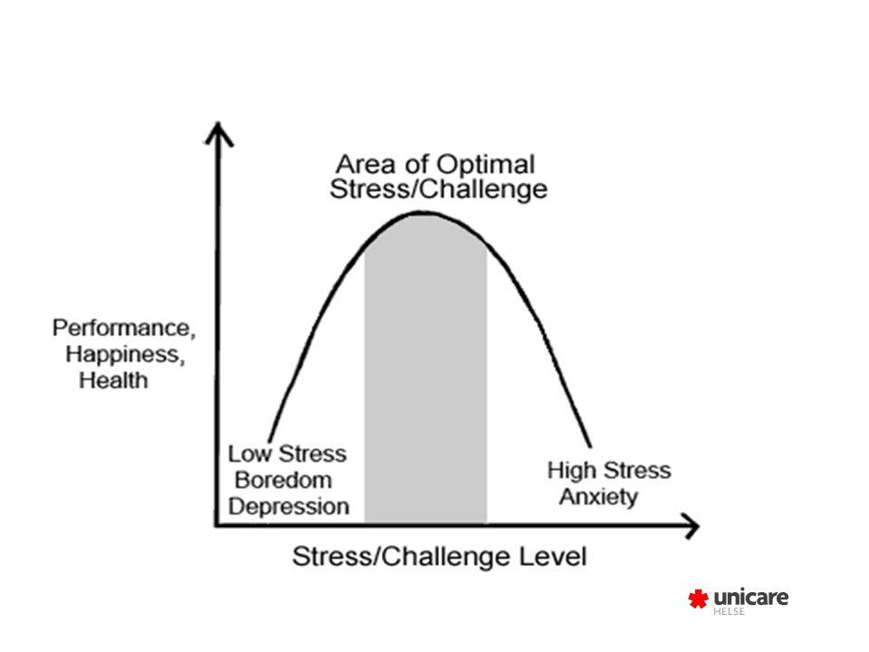 Stress-sårbarhet STRESS JOBBEN MEG PRIVAT-LIVET