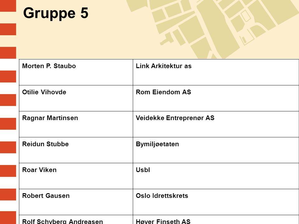 Gruppe 5 Morten P. Staubo Link Arkitektur as Otilie Vihovde
