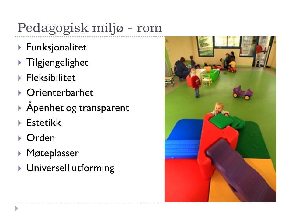 Pedagogisk miljø - rom Funksjonalitet Tilgjengelighet Fleksibilitet