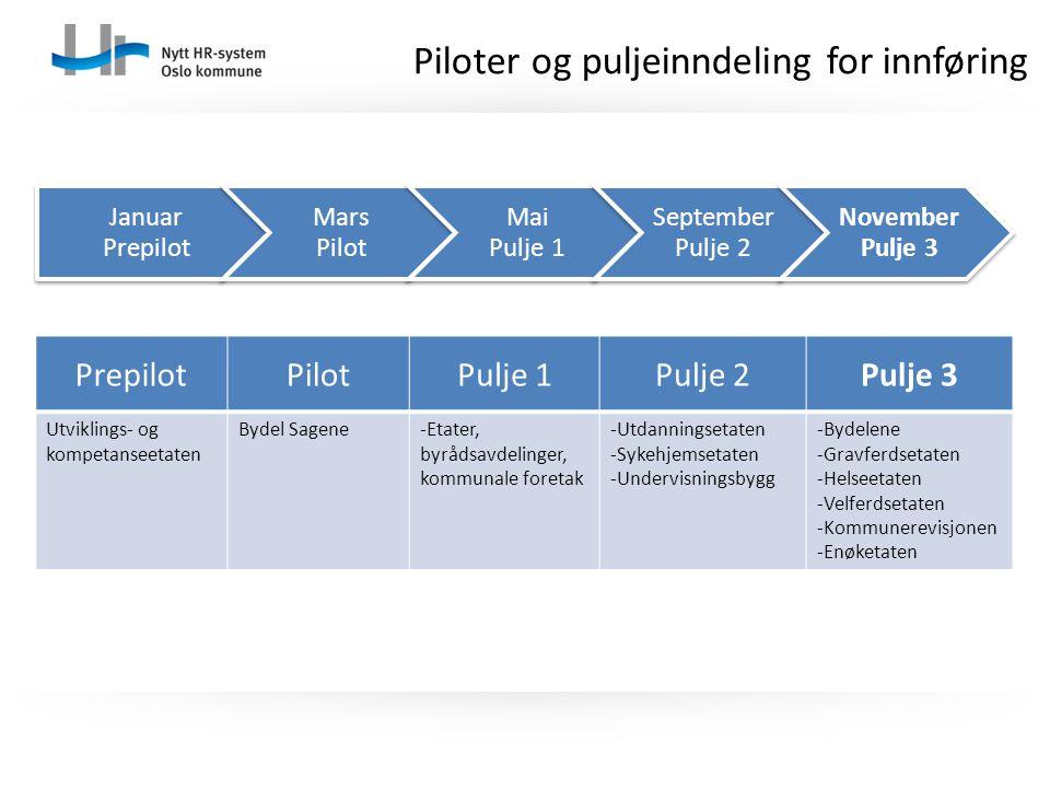 Piloter og puljeinndeling for innføring