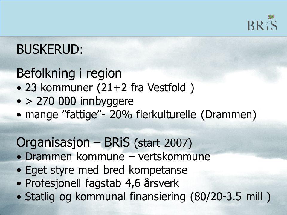 BUSKERUD: Befolkning i region. 23 kommuner (21+2 fra Vestfold ) > 270 000 innbyggere. mange fattige - 20% flerkulturelle (Drammen)