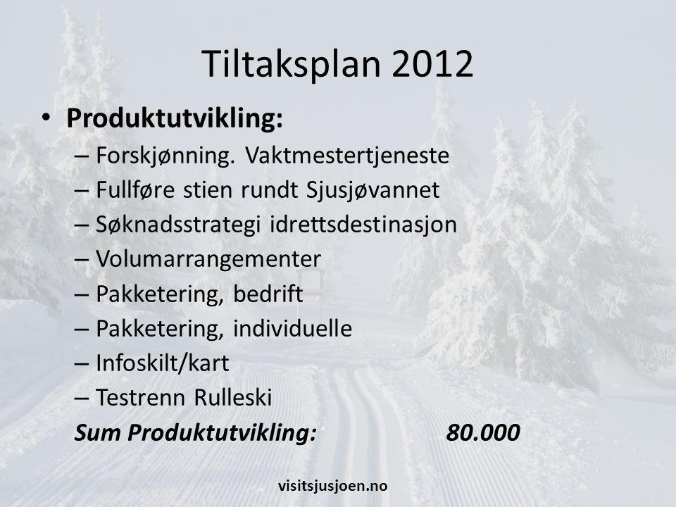 Tiltaksplan 2012 Produktutvikling: Forskjønning. Vaktmestertjeneste