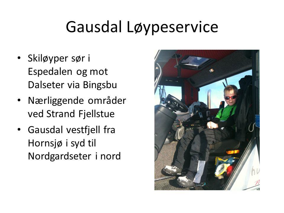 Gausdal Løypeservice Skiløyper sør i Espedalen og mot Dalseter via Bingsbu. Nærliggende områder ved Strand Fjellstue.