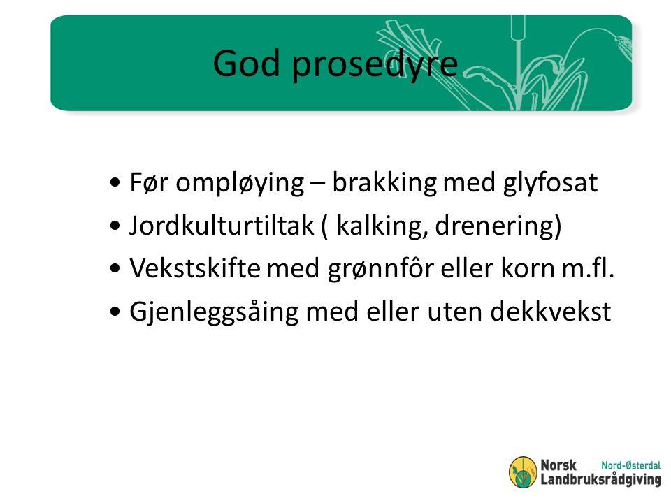 God prosedyre