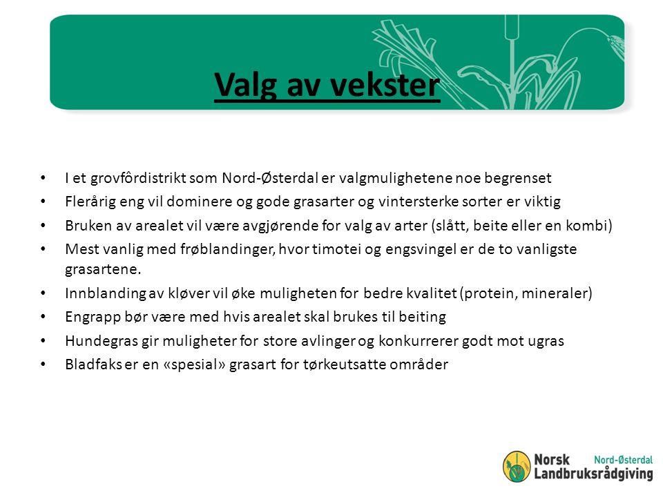 Valg av vekster I et grovfôrdistrikt som Nord-Østerdal er valgmulighetene noe begrenset.