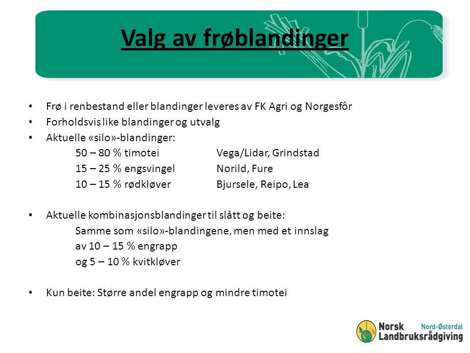 Valg av frøblandinger Frø i renbestand eller blandinger leveres av FK Agri og Norgesfôr. Forholdsvis like blandinger og utvalg.