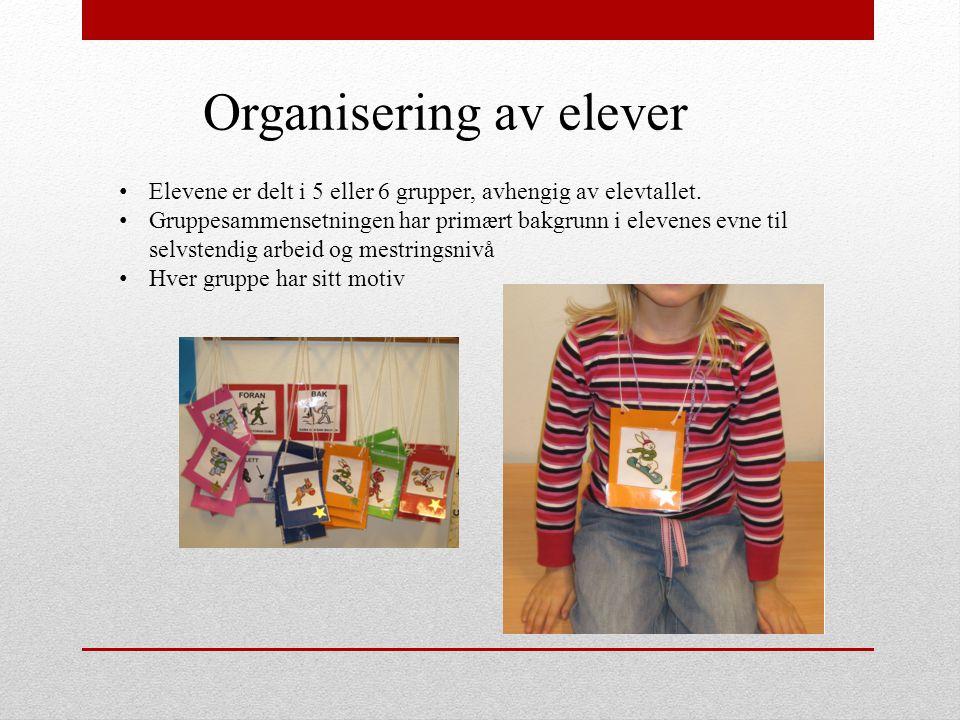 Organisering av elever