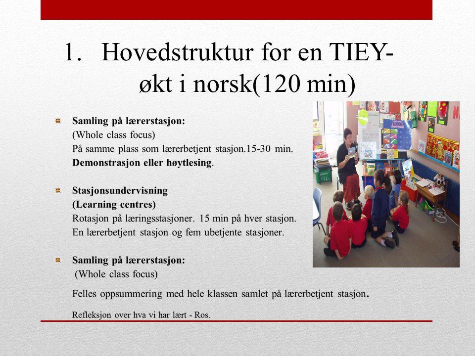 Hovedstruktur for en TIEY-økt i norsk(120 min)