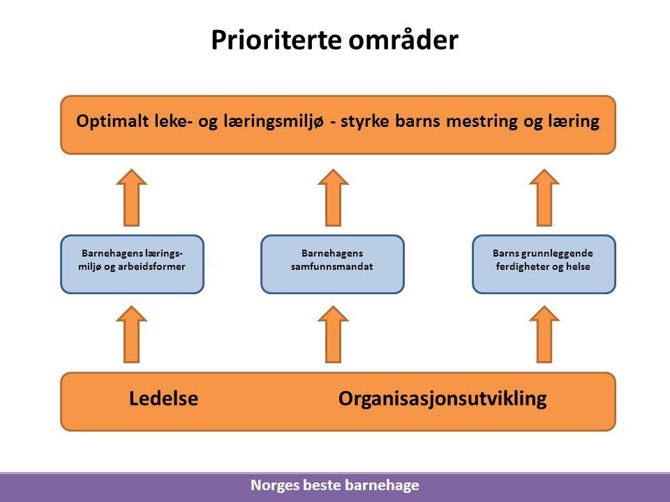 Prioriterte områder Ledelse Organisasjonsutvikling