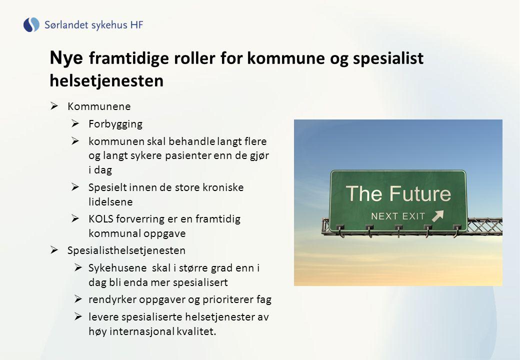Nye framtidige roller for kommune og spesialist helsetjenesten