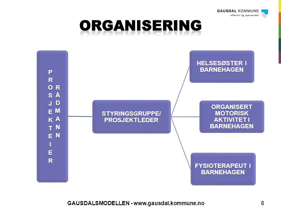 ORGANISERING PROSJEKTEIER RÅDMANN STYRINGSGRUPPE/ PROSJEKTLEDER