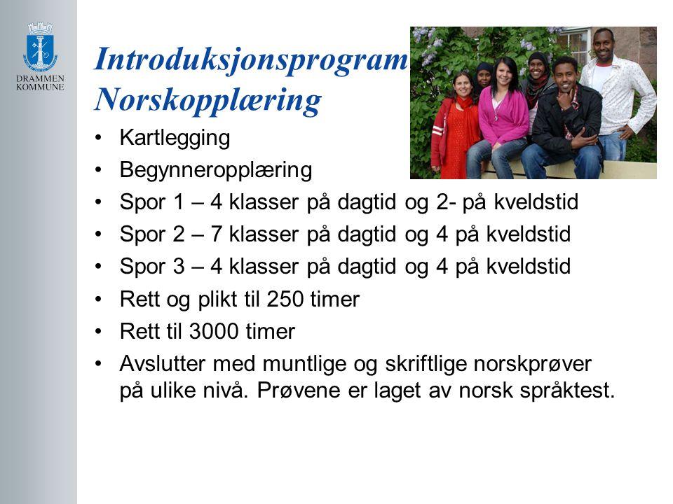Introduksjonsprogram Norskopplæring