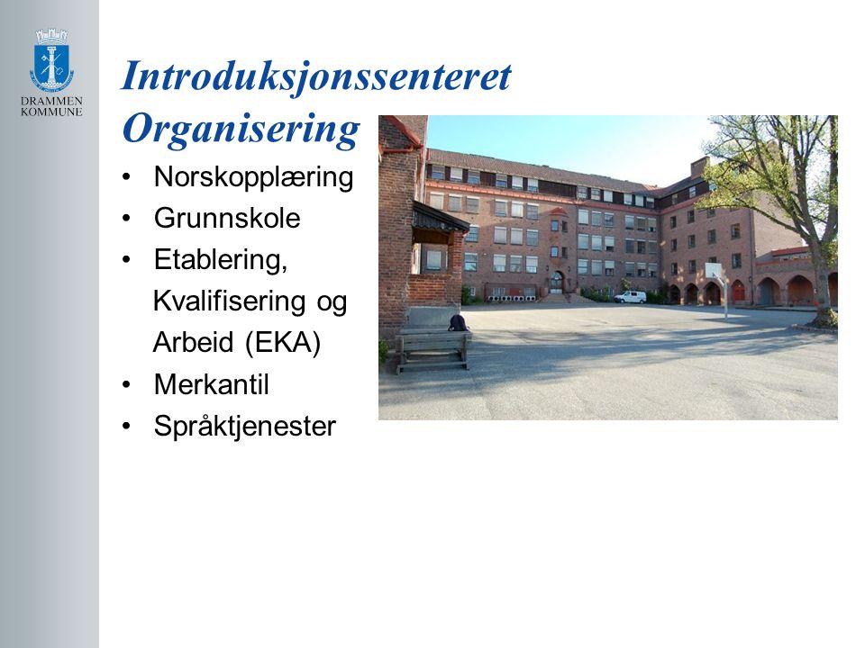 Introduksjonssenteret Organisering