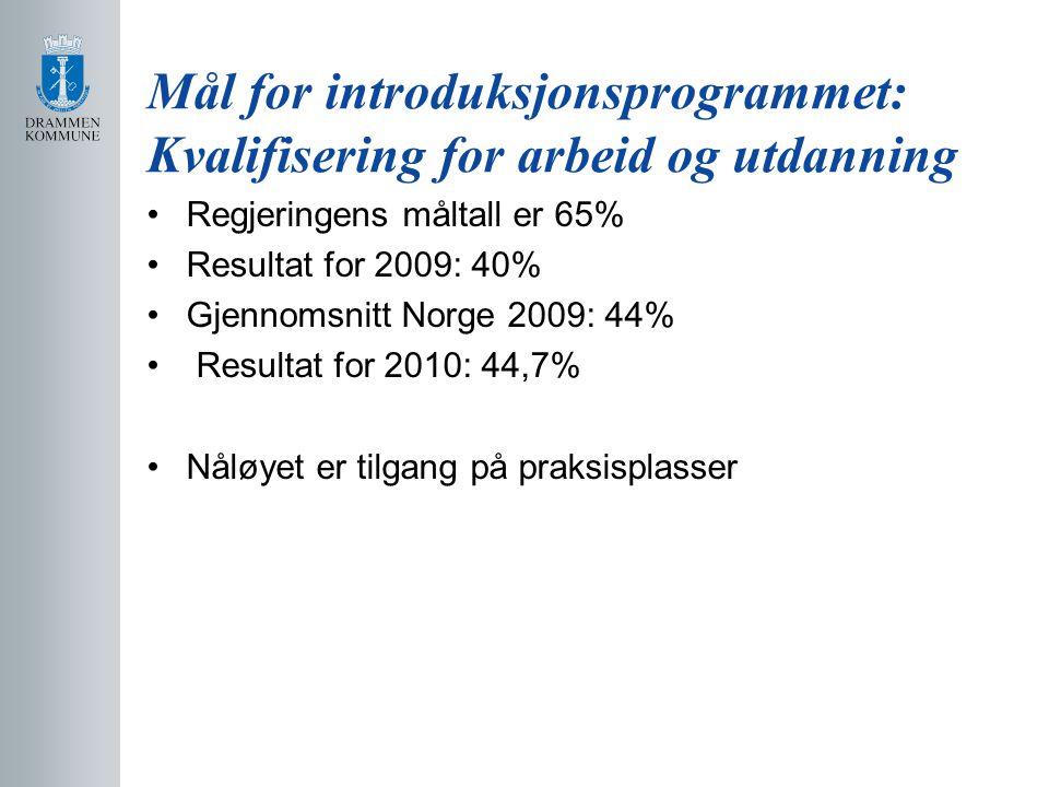 Mål for introduksjonsprogrammet: Kvalifisering for arbeid og utdanning