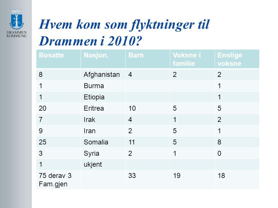 Hvem kom som flyktninger til Drammen i 2010