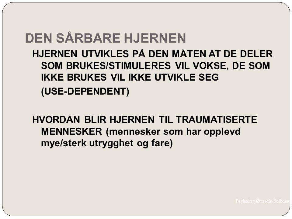 DEN SÅRBARE HJERNEN