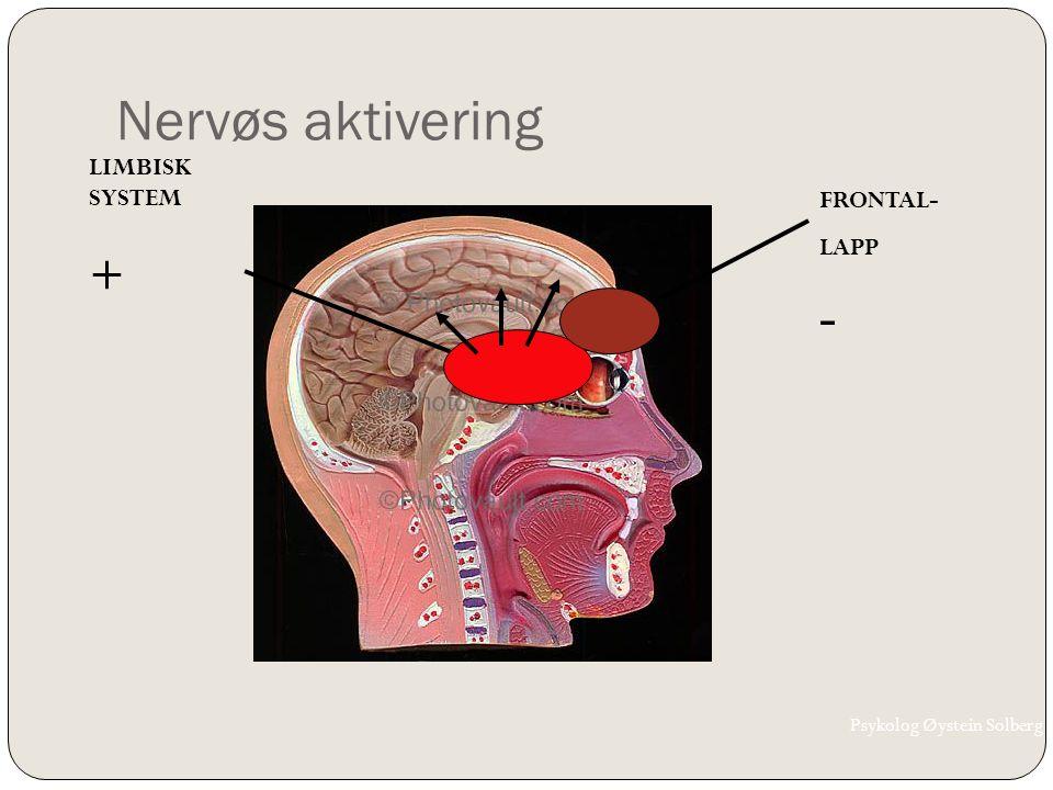 Nervøs aktivering + - LIMBISK SYSTEM FRONTAL- LAPP