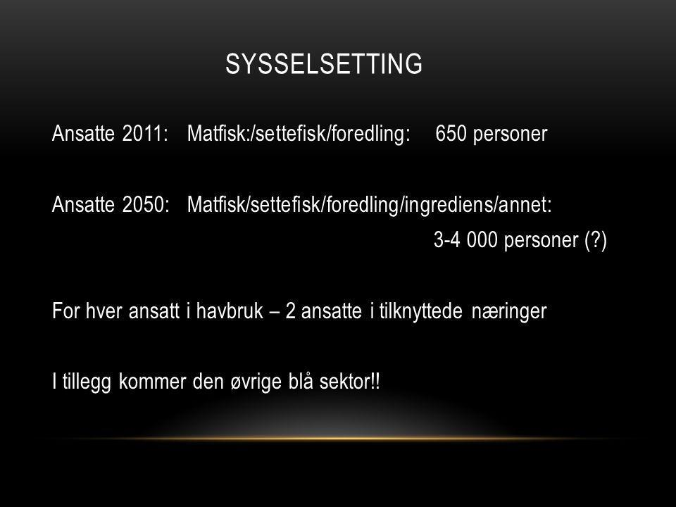 sysselsetting