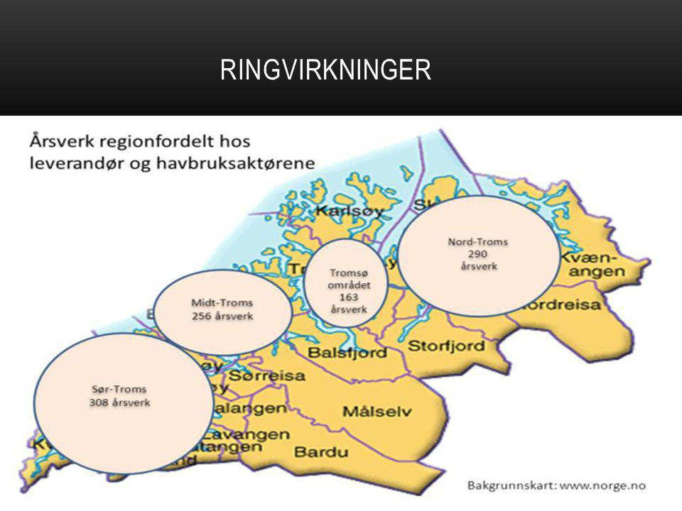 RINGVIRKNINGER